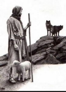 Even sheep know enough to be afraid of the wolves.